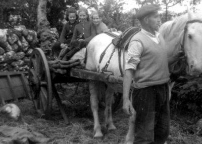 Going to School on horse & cart, Kinvarra, 1950s