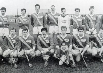 1993 Kilconieron County Intermediate Champions