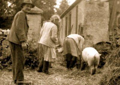 Eyreville, Feeding Pigs