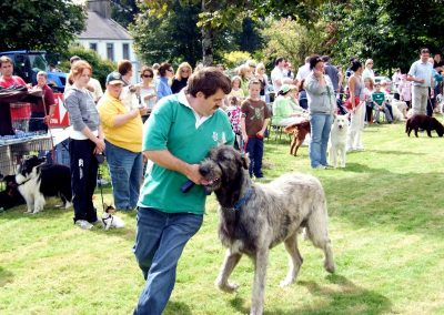 Monivea Fair Dog Show